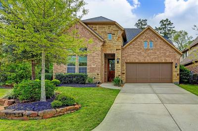 Tomball TX Rental For Rent: $3,850