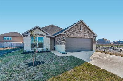 Single Family Home For Sale: 14718 Ruddy Duck Lane