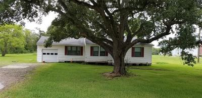Manvel Single Family Home For Sale: 6747 N Masters Road