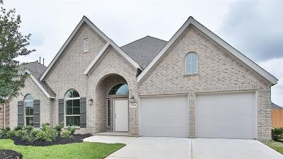 Pearland Single Family Home For Sale: 13613 Violet Bay Court