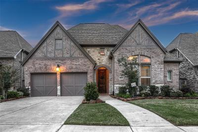 Sugar Land Single Family Home For Sale: 5007 Anthony Springs Lane