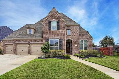 Sugar Land Single Family Home For Sale: 4307 Walston Ridge Court