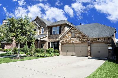 Fulshear Single Family Home For Sale: 5719 Spring River Lane