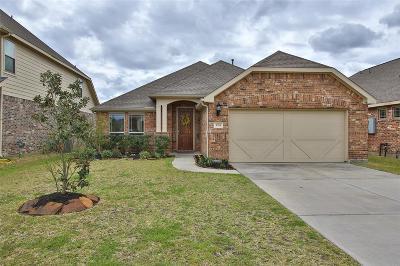 League City Single Family Home For Sale: 3014 Monticello Pines Lane