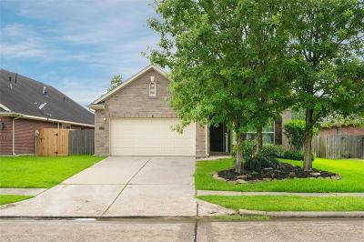 Houston Single Family Home For Sale: 14427 Red Tailed Hawk Lane