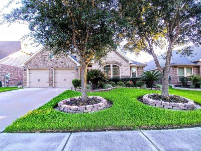 Pearland Single Family Home For Sale: 13508 Durango Pass Drive