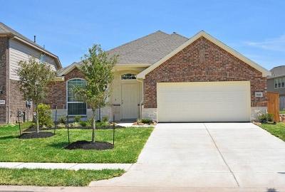 Lakes Of Savannah Single Family Home For Sale: 5011 Naples Grove Lane