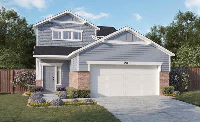 Magnolia Single Family Home For Sale: 12650 Alta Vista Court