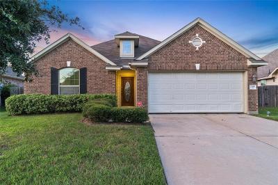 Spring Single Family Home For Sale: 21910 Prairie Spring Lane