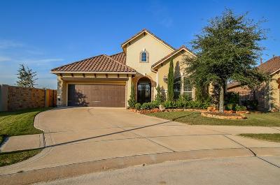 Fulshear Single Family Home For Sale: 22 Fair Bluff Court