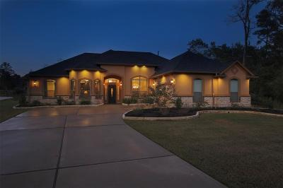 Montgomery Single Family Home For Sale: 401 Ridgelake Scenic Drive