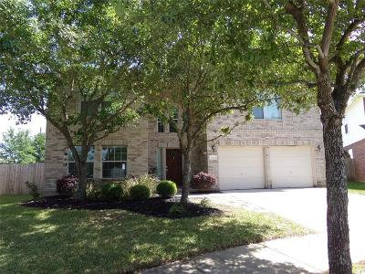 Houston Single Family Home For Sale: 9606 Ashwood Valley Drive