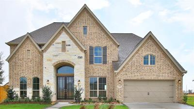 Katy Single Family Home For Sale: 23903 Songlark Valley Place