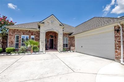 Tomball Single Family Home For Sale: 18611 Summercliff Lane
