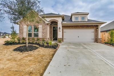 Fulshear Single Family Home For Sale: 30626 Morning Dove