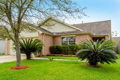 Sugar Land Single Family Home For Sale: 9606 Abigail Drive