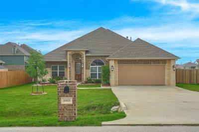 Magnolia Single Family Home For Sale: 18818 Wichita Trail
