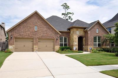 Conroe Single Family Home For Sale: 17145 Knoll Dale Trail Trail