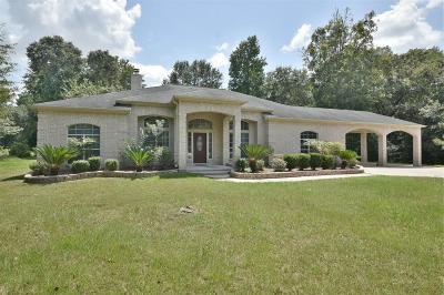 Porter Single Family Home For Sale: 19392 Riverwalk Drive