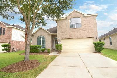 Fort Bend County Single Family Home For Sale: 20207 Bridge Manor Lane