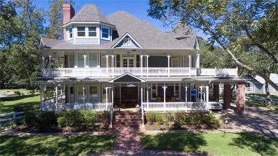 Sugar Land Single Family Home For Sale: 5409 Meadow Road