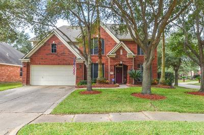 Katy Single Family Home For Sale: 802 Legend Spring Drive