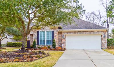 Porter Single Family Home For Sale: 20501 Sable Creek Dr Drive