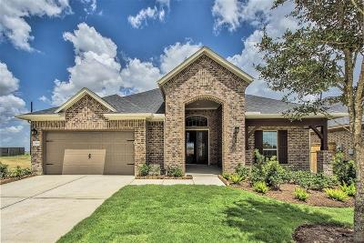 Fulshear Single Family Home For Sale: 28814 Rising Moon