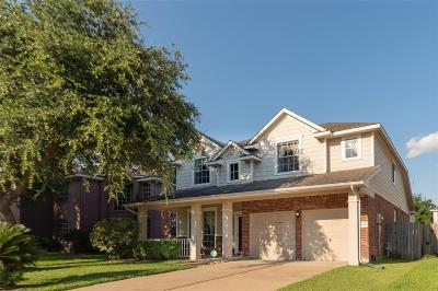 Houston Single Family Home For Sale: 8435 Fredericksburg Lane