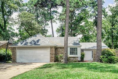 Houston Single Family Home For Sale: 3209 Lake Stream Drive