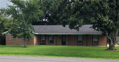 Alvin Single Family Home For Sale: 1102 W Cleveland Street