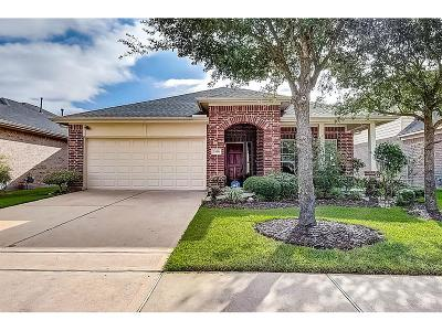 Houston Single Family Home For Sale: 7830 Gray Jay Court