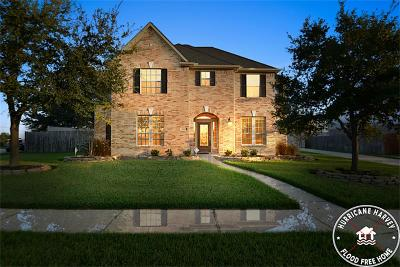 Single Family Home For Sale: 4603 Countrycrossing Drive