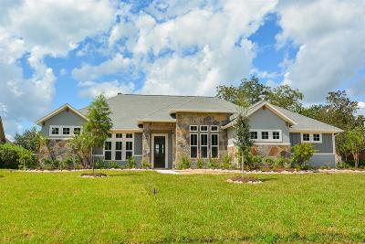 Fulshear Single Family Home For Sale: 5011 Waterbeck Street