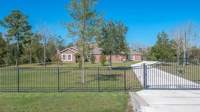 Alvin Single Family Home For Sale: 3010 Megan Lynn Lane