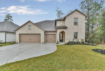 Spring Single Family Home For Sale: 27692 Vivace Drive