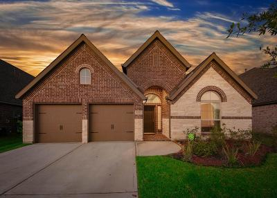 Pearland Single Family Home For Sale: 13211 Sage Meadow Lane
