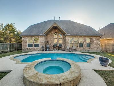 Houston Single Family Home For Sale: 14723 Castle Cove Lane