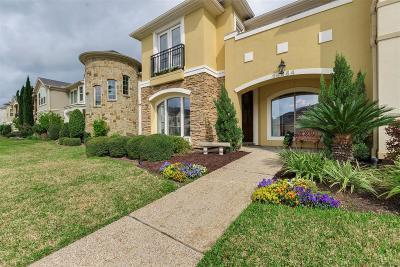 Houston Condo/Townhouse For Sale: 14454 Summerleaf Lane