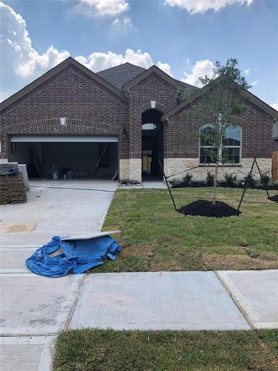 Pearland Single Family Home For Sale: 2706 Merlin Lane