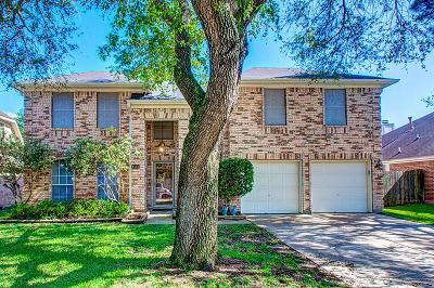 Katy Single Family Home For Sale: 1123 Mountain Meadows Drive