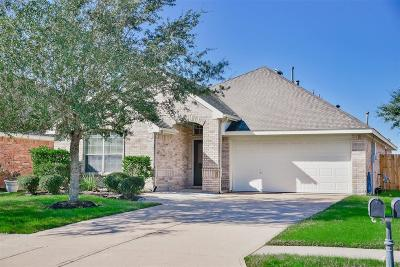 League City Single Family Home For Sale: 423 Abbey Lane