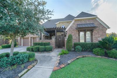 Single Family Home For Sale: 18623 Duke Lake Drive