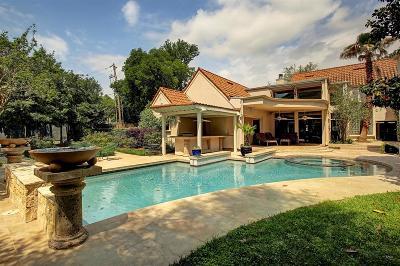 Braeswood Single Family Home For Sale: 2305 Underwood Street