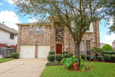Single Family Home For Sale: 17602 W Copper Lakes Drive Drive