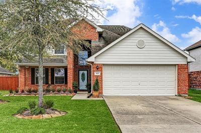 Galveston County Single Family Home For Sale: 3227 Rippling Falls Lane