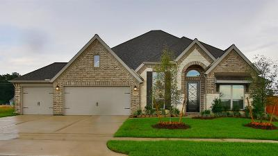 Tomball Single Family Home For Sale: 21430 Martin Tea Trail