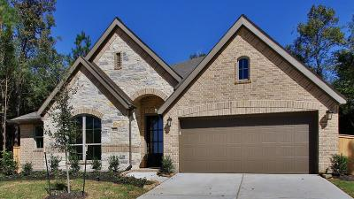 New Caney Single Family Home For Sale: 18703 Montero Lane