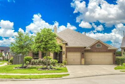Fulshear Single Family Home For Sale: 27610 Great Sky Court