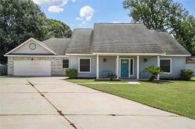 Montgomery Single Family Home For Sale: 10806 Highpoint Lane